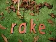 Missing Letter Rake