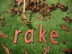 Missing Letter Rake.jpg