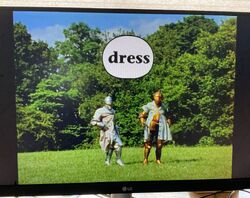 Gawain's Word Dress.jpg