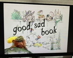 A Good Sad Book 2.jpg