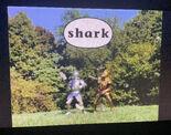 Gawain's Word Shark