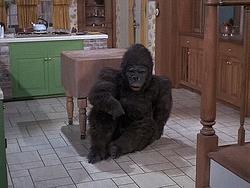 Gorilla Darrin 7×22.png