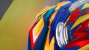 BBSK-Brave Valkyrie rubber blades in Brave Ring 1