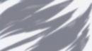Beyblade Burst Gachi Heaven Pegasus 10Proof Low Sen avatar 3
