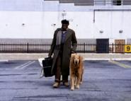 Blind Man's Dog