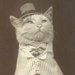 Darealarusham's avatar