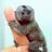 MonkeyMan10's avatar