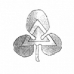 ElBisabuelo's avatar