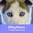 Snowdog67's avatar
