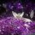 Lavendelium