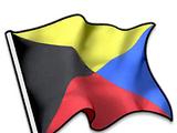 Z Flag