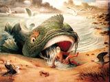 Great Fish
