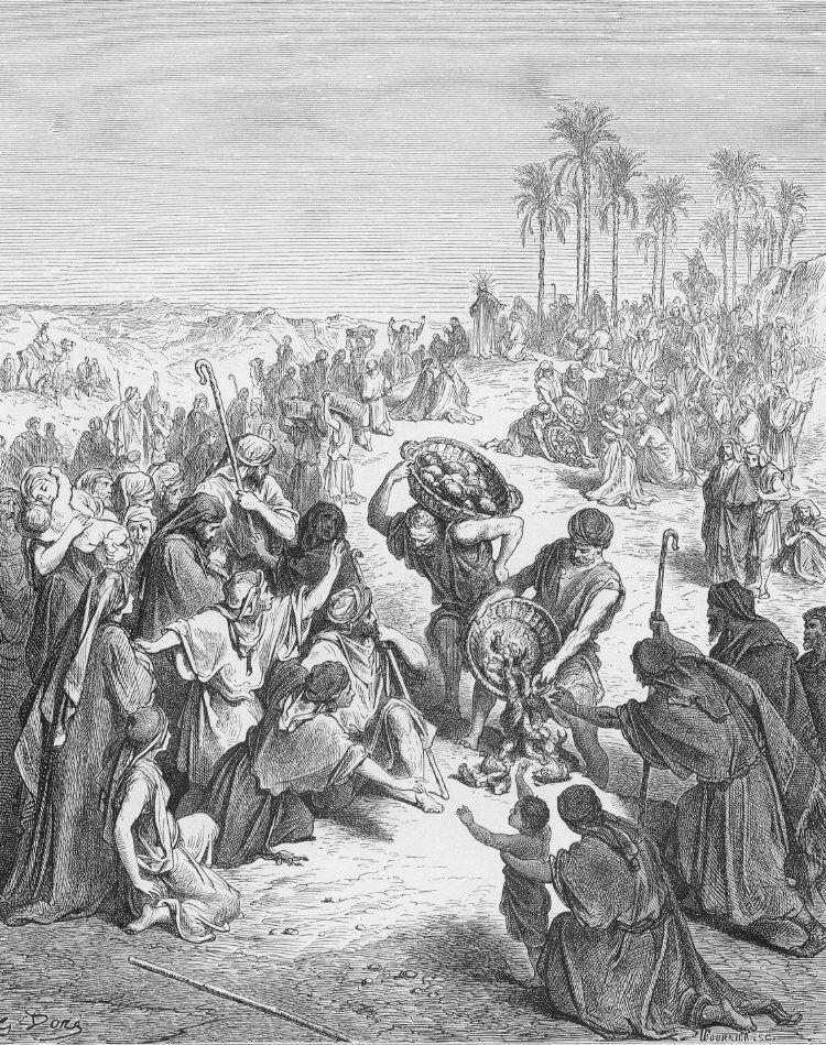 Dore 40 Matt14 Jesus Feeds the Multitudes.jpg