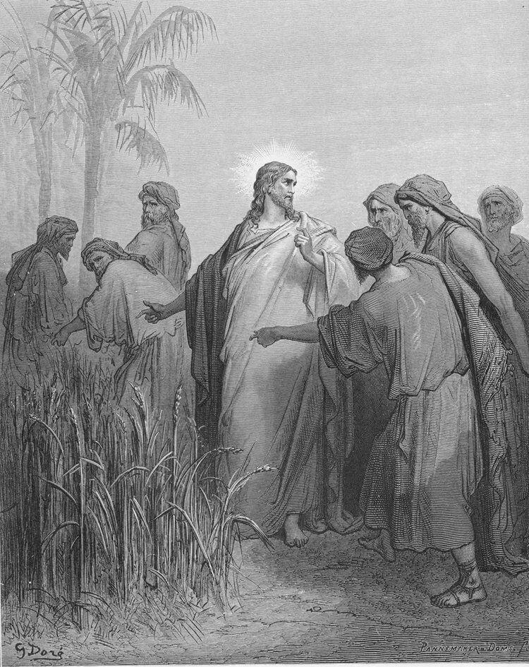 Dore 41 Mark02 The Disciples Pick Corn on the Sabbath.jpg