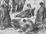 Bible:使徒行傳第七章