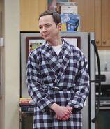The Big Bang Theory S9x13