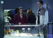 The Big Bang Theory S9x09