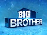 Big Brother 16 (US)