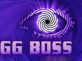 Bigg Boss (franchise)