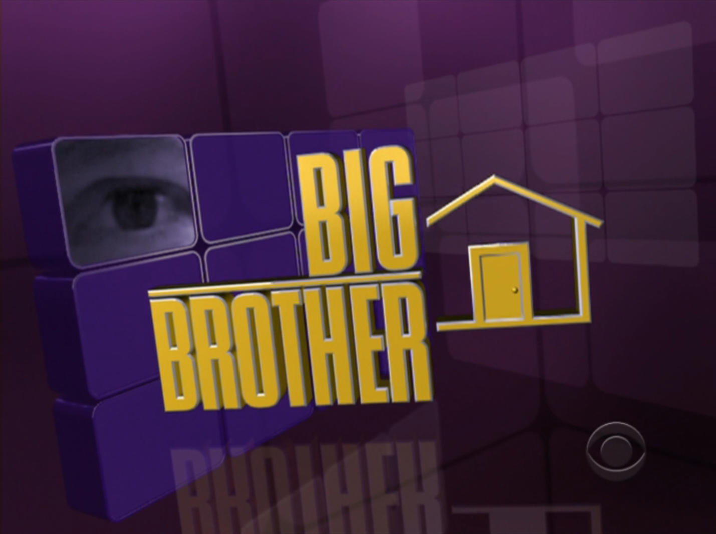Big Brother 11 (US)