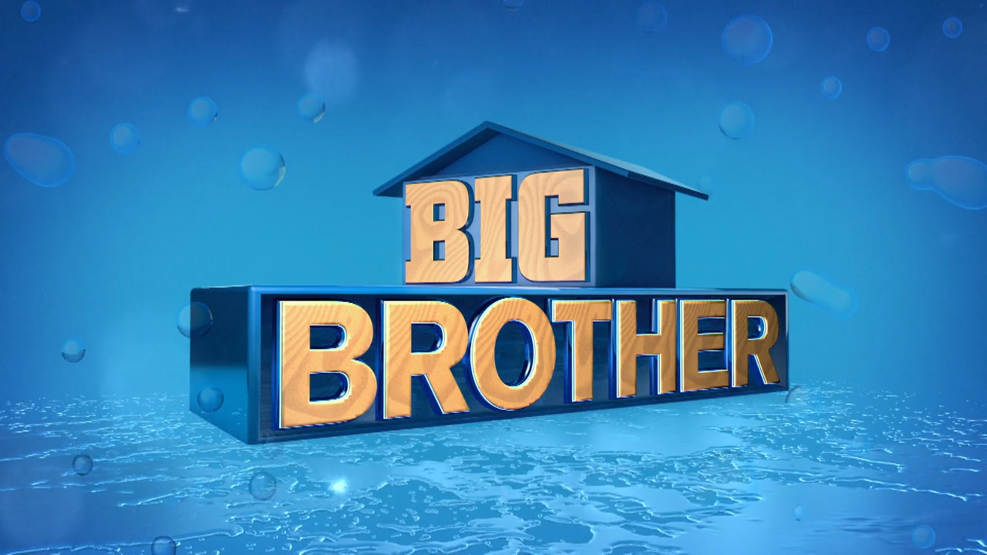 Big Brother 21 (US)