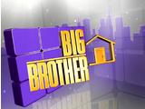Big Brother 14 (US)