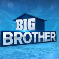 Big Brother 18 Us Big Brother Wiki Fandom Week 9 fantasy football tiers. big brother 18 us big brother wiki