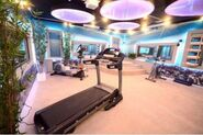 Gym (CBB8)