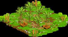 1 Orchard Basic tropicalFarmBananaOrchard0 Orchard.png