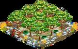 1 Orchard Basic xmasFarmAlmondOrchardSuper8 Orchard.png