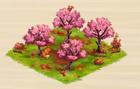 Herbstliche Kirschplantage.png