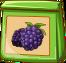 Brombeer-Spezialsaat-icon.png