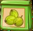 Stachelbeeren-Spezialsaat-icon.png