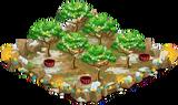 1 Orchard Basic xmasFarmAlmondOrchardSuper3 Orchard.png