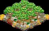 1 Orchard Basic xmasFarmAlmondOrchardSuper5 Orchard.png