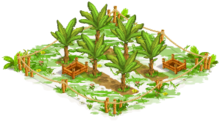 1 Orchard Basic tropicalFarmBananaOrchard1 Orchard.png