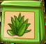 Aloe Vera-Spezialsaat-icon.png