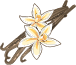Vanille-icon.png