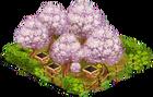 Rustikale Kirschplantage.png