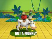 Monkey21.png