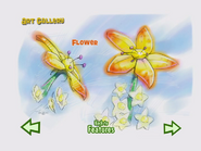 Rumor Flower