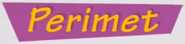 Perimet logo