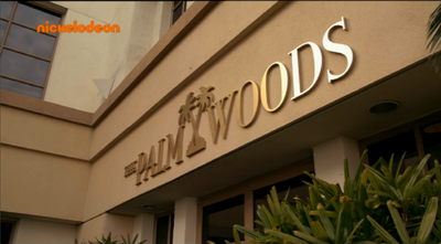 The Palm Woods episode 4.png