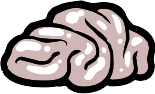 Brain design.png