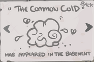 The Common Cold Geheimnis