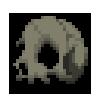 Skull (Environment)