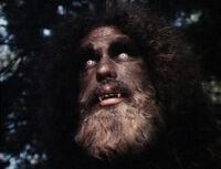 Bigfoot andre.jpg