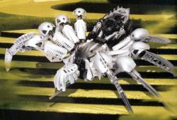 Silver Chute Spider