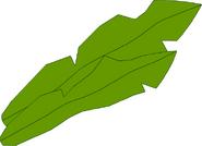 Merilevä