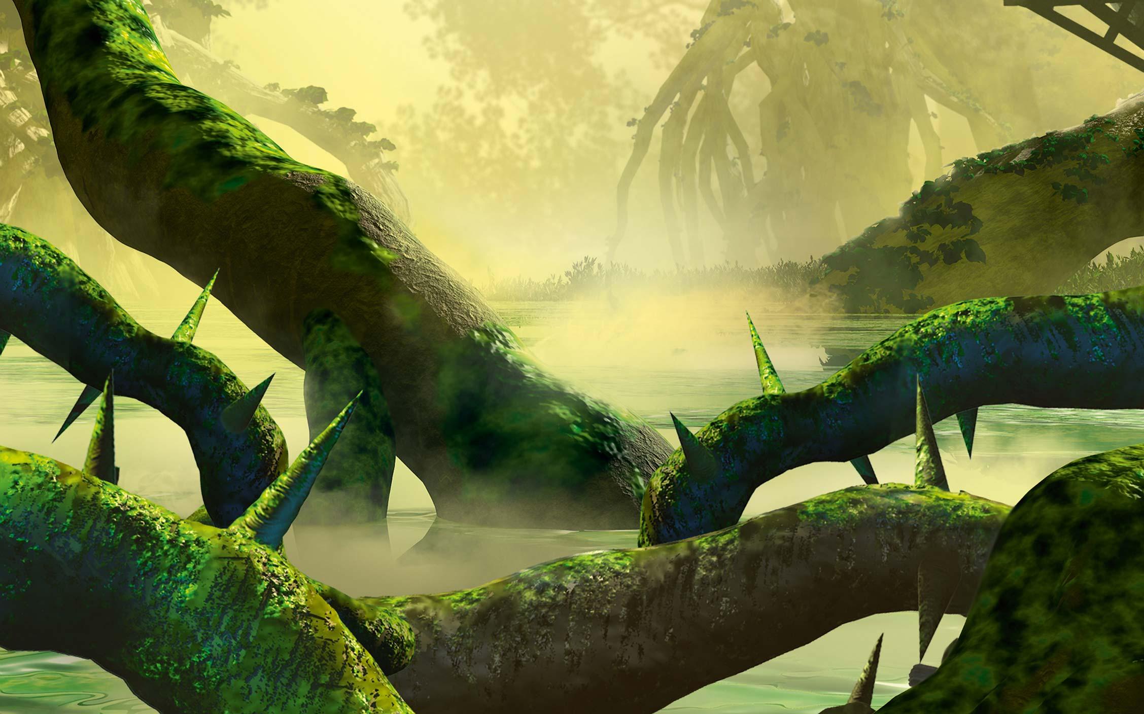 Region of Jungle